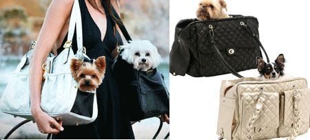 1000 ideas about dog carrier purse on pinterest dog - Dog purse carriers designer ...