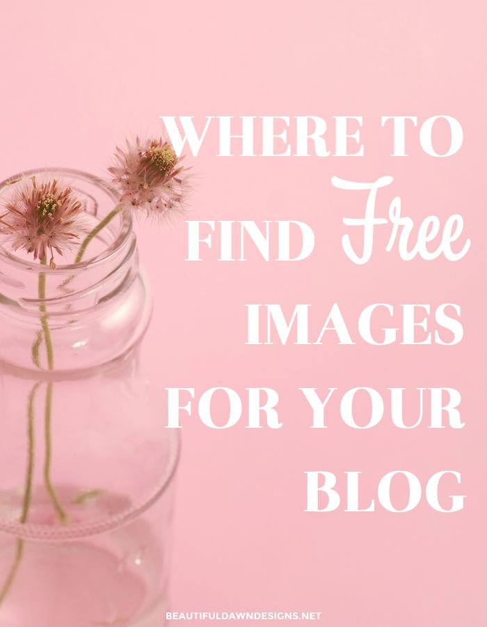 1143 best to blog or not to blog images on pinterest affiliate