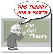 cell theory - Google Search
