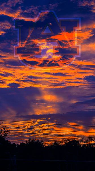 Auburn Football (Beautiful Orange N Blue)!...........oh my goodness, this is beautiful!!!!
