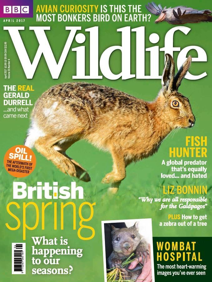 "In this issue;  British spring - What is happening to our seasons?  Fish hunter - A global predator that's equally loved... and hated  Liz Bonnin - ""Why we are all responsible for the Galapagos""  Avian curiosity - Is this the most bonkers bird on earth?  The real Gerald Durrell... and what came next  Oil spill! - The aftermath of the world's first mega-disaster  Wombat hospital - The most heart-warming images you've ever seen  PLUS how to get a zebra out of a tree"