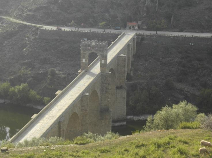 El magestuoso puente romano de Alcántara, el más alto y bonito que construyeron aquellos magníficos ingenieros que hacían las cuentas con letras en lugar de números. El lugar donde está construido era el más idóneo para construir la enorme presa del embalse de Alcántara, al tener que construirla en otro lugar tuvieron no pocas dificultades.