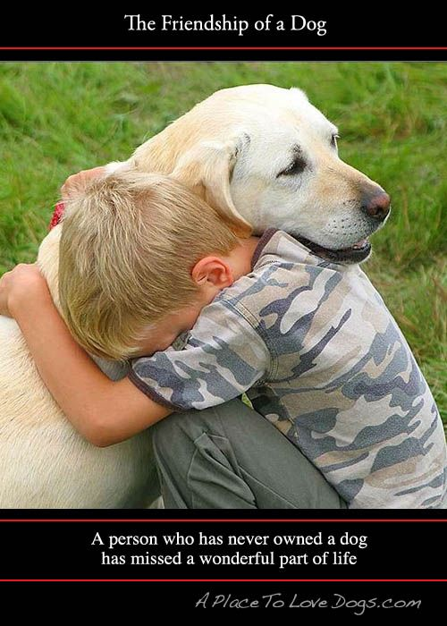 ~~Loss of a Pet Sympathy Poems~~ Pets are silent members of our