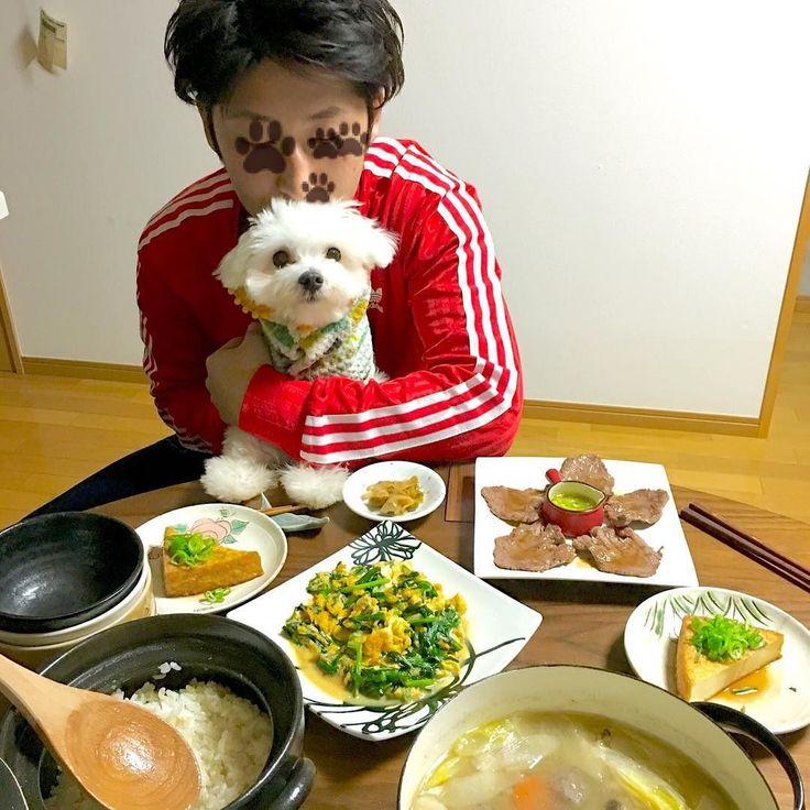 主張から帰ってきたので久しぶりにごはん作りました  豚汁厚揚げ牛タンニラ玉搾菜でした 魚を焼こうと思っていたのに忘れた #おうちごはん #夕食 #晩ごはん #ふたりごはん #献立 #犬とごはん #暮らし #日々 #dinner #food #Japanesefood #マルチーズ #犬バカ部 #わんこ #like #happy #cute #dog #love #Maltese #pet #instapic #kaumo by mashiror