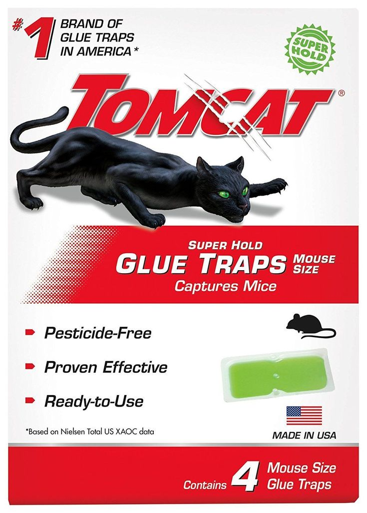 Tomcat 4 Mouse Glue Trap Professional Strength Non-Toxic Also: Scorpions Spiders