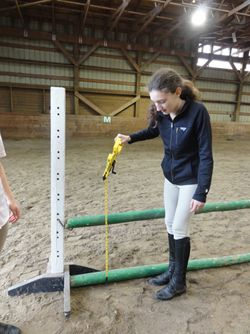 Want to help teach & improve your young horse lover's math skills? Try Horse Lover's Math! http://hhoa.site/2bmpscw