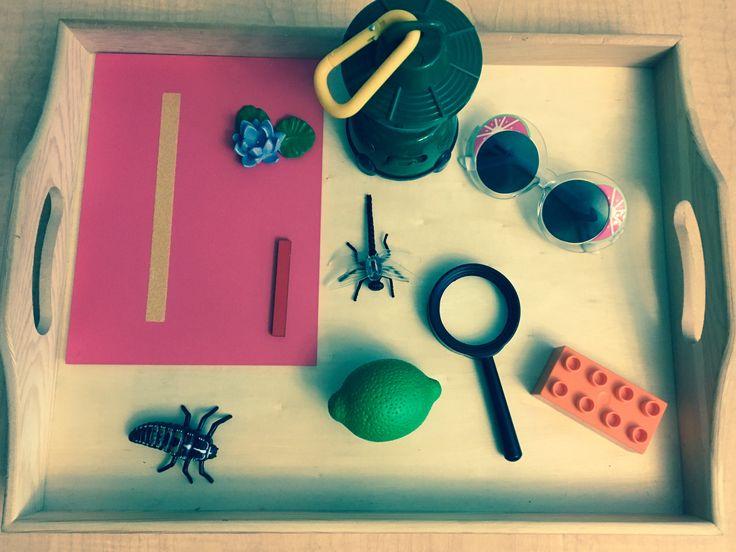 "Spanish language tray! Letter ""l"" objects: Lotus, linterna, lentes, libélula,larva, lego, lupa, limón. English: Lotus, lamp, sun glasses, dragonfly, larva, lego, magnifying lens, and lime."