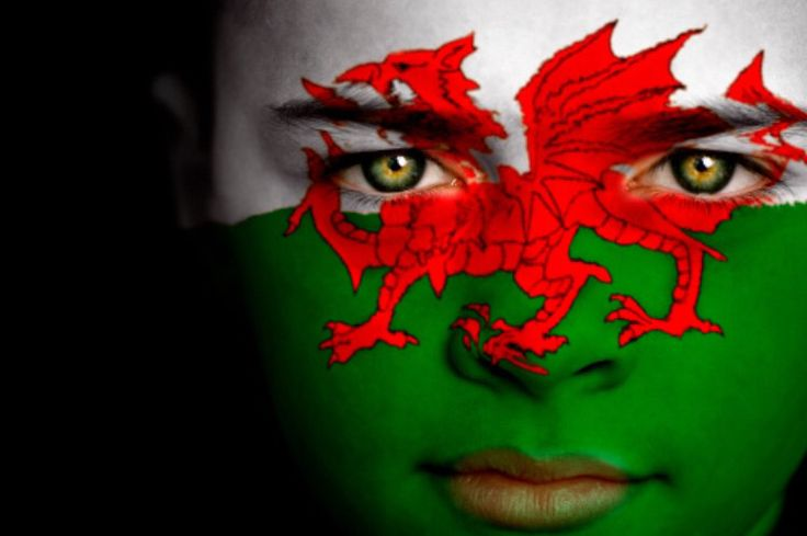 Wales Flag Boy Capital: Cardiff