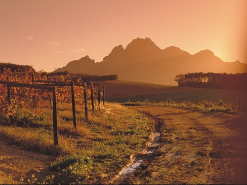 Franschhoek landscape by Franschhoek Wine Valley, via Flickr