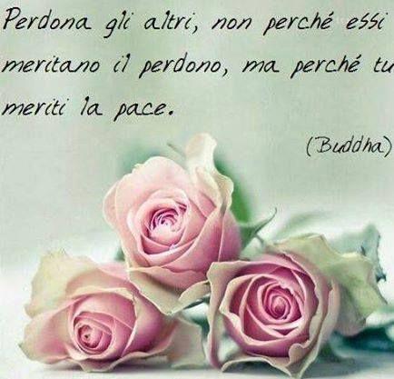 Perdona a los demás, no porque se merezcan el perdón, sino porque tu mereces la paz. Budda (X)