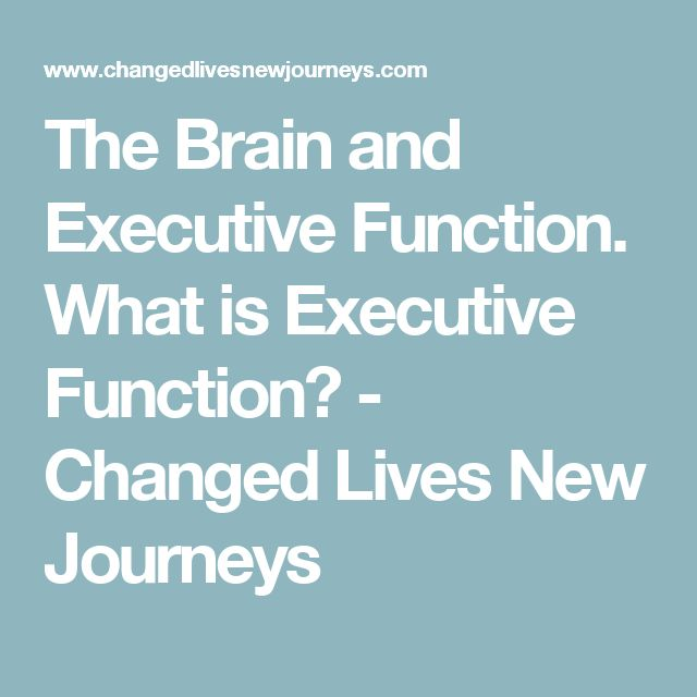 The Brain and Executive Function. What is Executive Function? - Changed Lives New Journeys