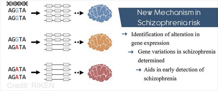 RNA Splicing Associated With Schizophrenia Risk
