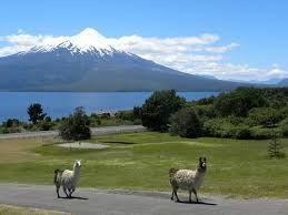 Ensenada,Chile - Buscar con Google