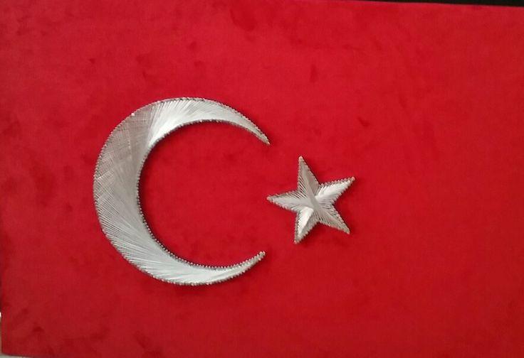 Türk bayrağı(40×60)