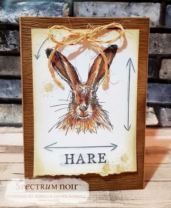 Card made using Sheena Douglass – A Little Bit Sketchy - Hare - coloured using Spectrum Noir ColourTint pencils - Nature & Primary Designed by Rebecca Davies-Sandall #crafterscompanion #spectrumnoir