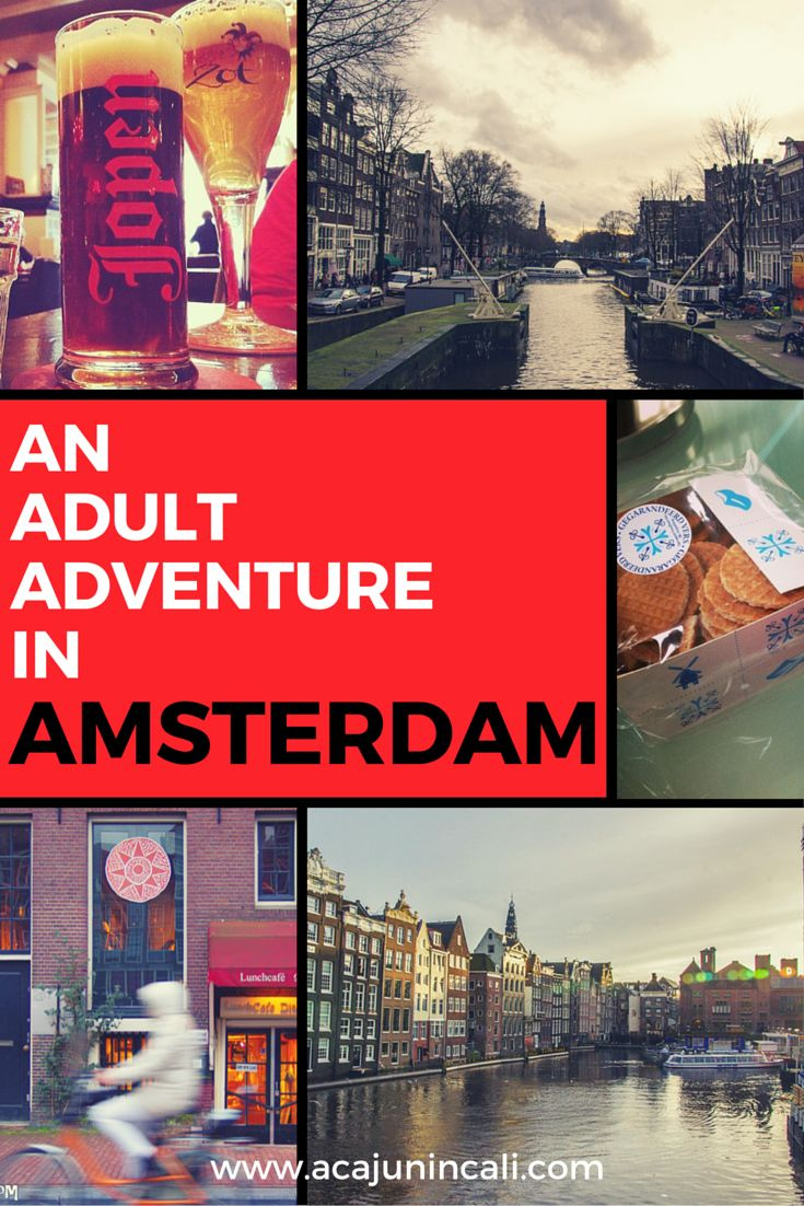 Visiting Amsterdam | Amsterdam Travel Tips | Tips for Visiting Amsterdam | Going to Amsterdam | What to do in Amsterdam | What to eat in Amsterdam | What to see in Amsterdam | Where to stay in Amsterdam | Amsterdam Itinerary via @a Cajun in Cali | travel & lifestyle blogger | photographer