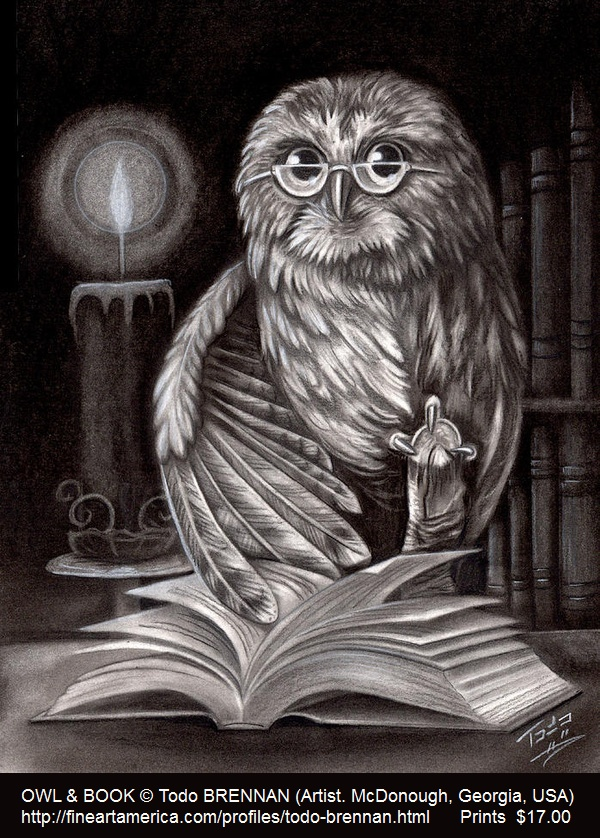 OWL & BOOK drawing © Todo BRENNAN (Artist. McDonough, Georgia, USA) via Fine Art Print. Prints starting at $17.00 ...   Pin from the primary source. Artists need to earn a living too. If you already have this pin, it only takes a second to edit the Description & Link by cut & paste. See: http://pinterest.com/about/etiquette/