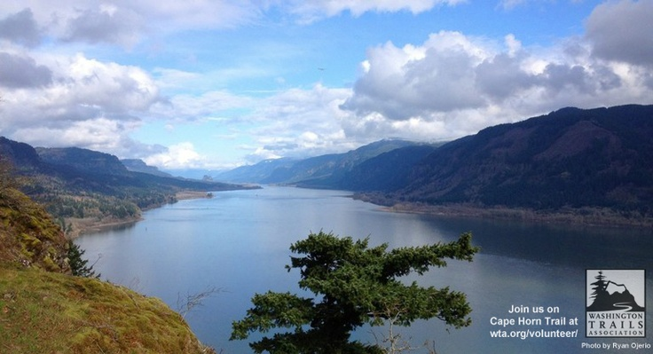 Volunteer or hike a trail with a view! Cape Horn trail is a great day trip/work party for folks in Vancouver, Portland Oregon, or Seattle. #hikes #volunteer wta.org/volunteer