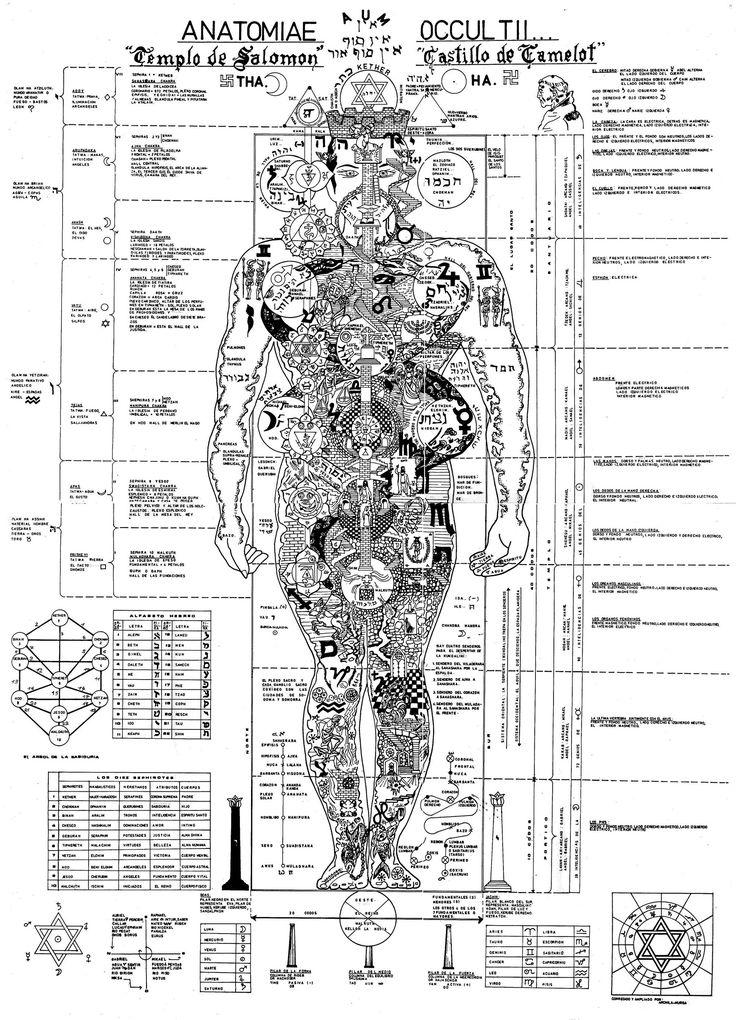 Una introducción a la filosofía del microcosmos, imágenes y citas que muestran que el hombre es el espejo del cosmos y que su anatomía es una especie de templo para establecer una reconexión con la divinidad