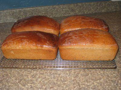 Favorite Wheat Bread Recipe