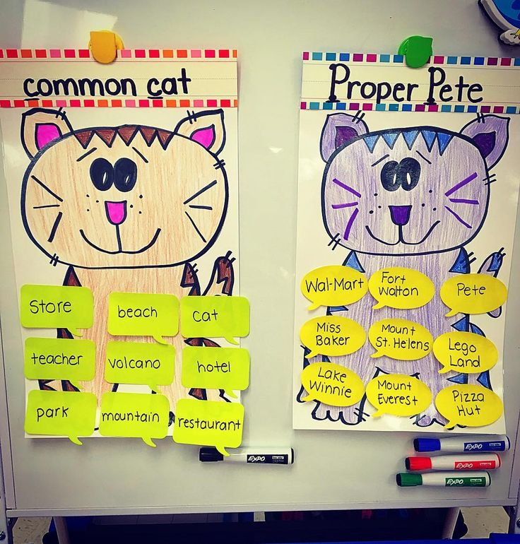 Huge shout out to our awesome German teachers for making these posters for me to teach common & proper nouns! I CANNOT draw and they came to the rescue! #teachersfollowteachers #teachersofinstagram #iteachtoo #iteachfirst #firstgrade #funinfirst #nouns #petethecat #thankyou