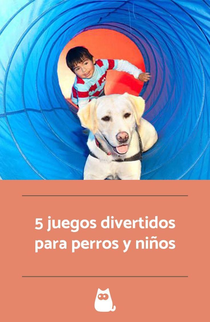 5 #juegos divertidos para #perros y #niños, ¡enséñales a disfrutar juntos! #amor #diversion