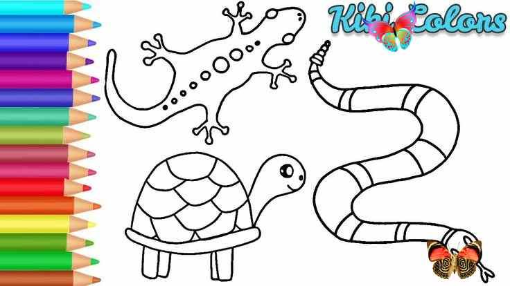 Drawing Reptiles Easy Teach Drawing For Kids And Toddlers Coloring Page Video Drawing Reptiles Easy Teach Drawing For Kids And Toddlers Coloring Pag Br