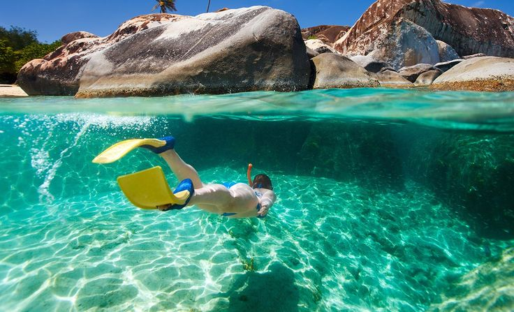 The Ten Best Snorkelling Spots in Sydney | Concrete Playground