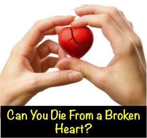 Can You Die From a Broken Heart? � http://blog.myheart.net/2014/02/02/can-you-die-from-a-broken-heart/