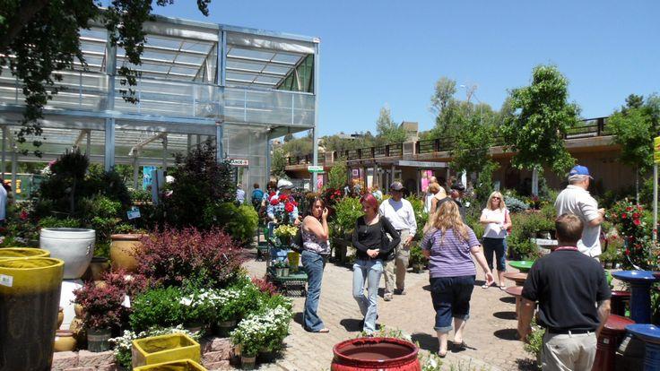Upper greenhouse fun