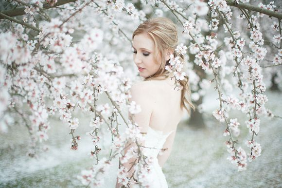 Almond Blossom. Would make a lovely cherry blossom substitute for a Japanese bride.