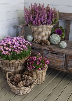 Beautiful late summer display of flowers. Absolutely love the use of baskets it gives it a rustic feel!