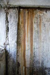 Mold damage wall abandoned