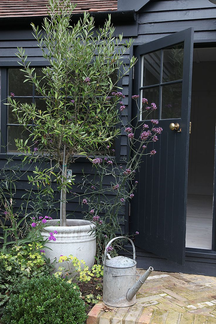 Garden Detail - A Beautiful Home Tour Of A Traditional British Summerhouse In London Painted In Little Greene's French Grey And Farrow & Ball's Off Black   Photos By Light Locations