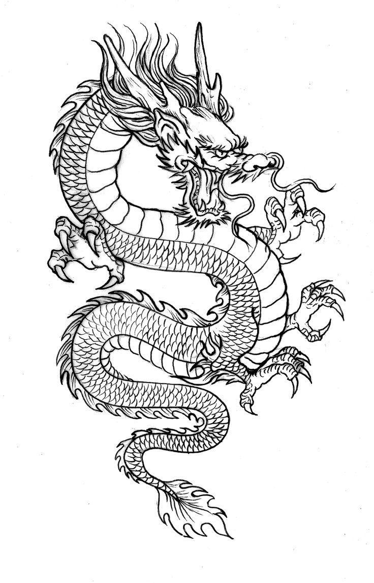 Dünne Linie Drache   – Tattoo Ideen