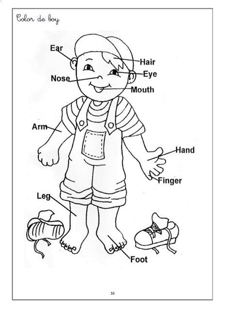 Body Parts Coloring Pages Printables - High Quality Coloring Pages ...