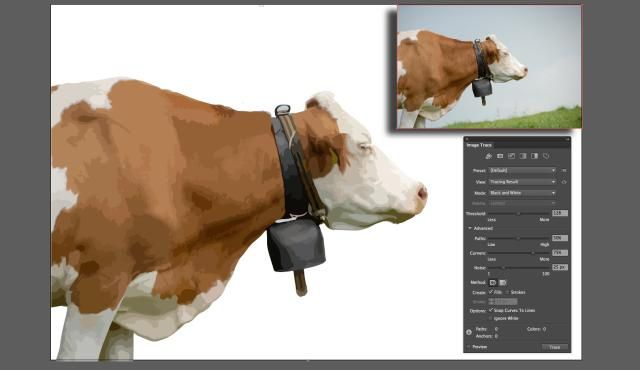 How To Use Image Trace In Illustrator CC 2014
