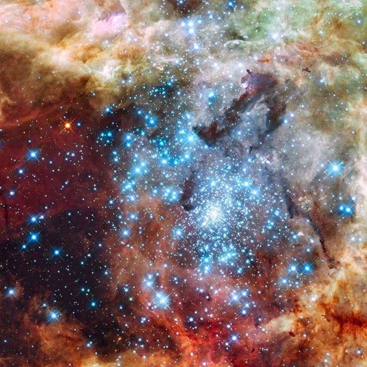This is a Hubble Space Telescope image of a pair of star clusters that are believed to be in the early stages of colliding.: Photos, Stars Cluster, Galaxies, Hubble Spaces Telescope, Cosmo, Hubble Telescope, Cloud, Spaces Travel, 30 Doradus
