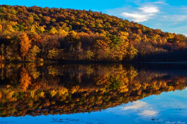 "AccuFan #Weather Photo of the Day: Autumn's Beauty in NJ by ""elizabethbran"" on 10/27/14  #photooftheday"