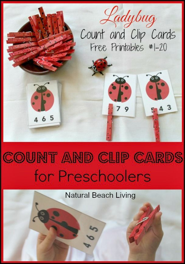 Ladybugs, Preschool Math, Count & Clip Cards,Math,Toddlers, fine motor skills,Spring activity,Free Printables,ladybug life cycle, www.naturalbeachliving.com