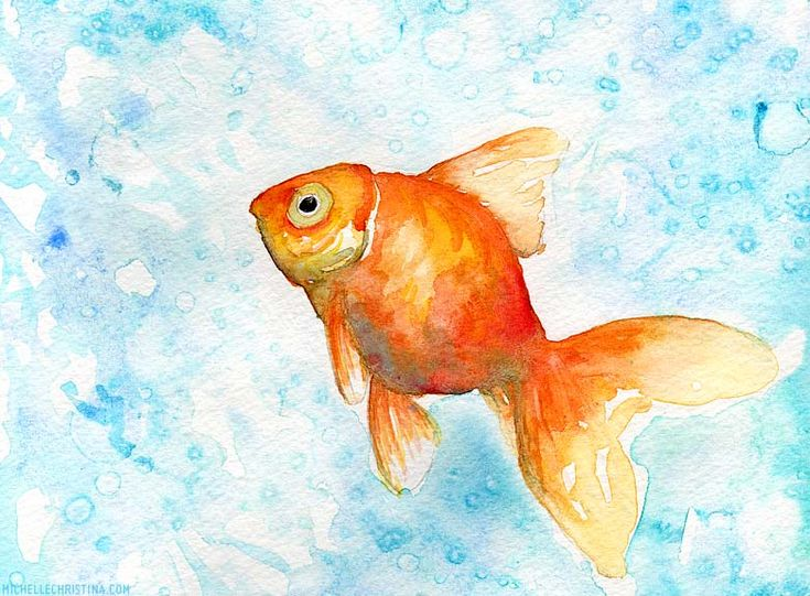 AquarelleGoldfish Watercolors, Watercolors Inspiration, Painting'S Watercolors, Fish Tattoo, Goldfish Painting, Gold Fish, Painting Watercolors, Watercolors Painting, Watercolors Goldfish