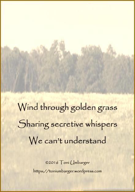 Toni Umbarger | Thoughtseeds | Whispers | #poetry #haiku #nature #thoughtseeds | https://toniumbarger.wordpress.com/
