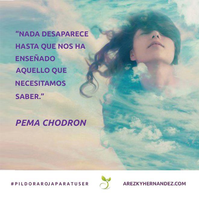 Nada desaparece hasta que nos ha enseñado aquelo que necesitamos saber #pildorarojaparatuser  #pemachodron