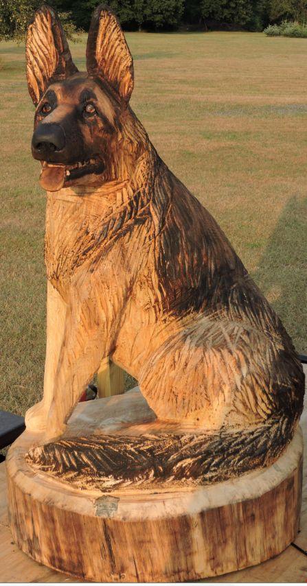 Image Result For German Shepherd For Sale In Sc