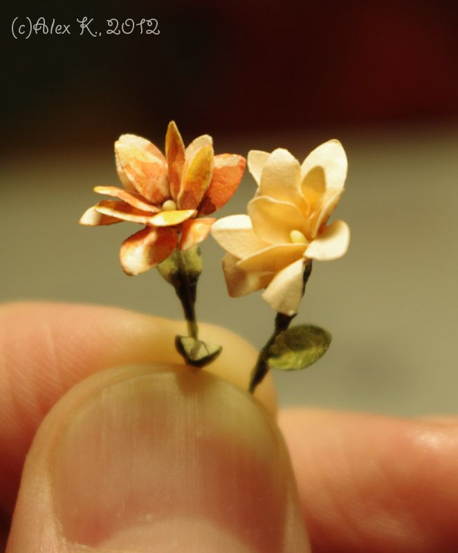366 best miniature crafting tools supplies images on pinterest 3 deagostini material flowersdollhouse miniature mightylinksfo