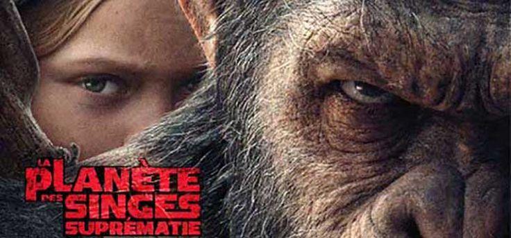 La Planète des Singes - Suprématie, film de Matt Reeves, avec Andy Serkis, Woody Harrelson, Steve Zahn. Dernier volet de la trilogie, se défendre.
