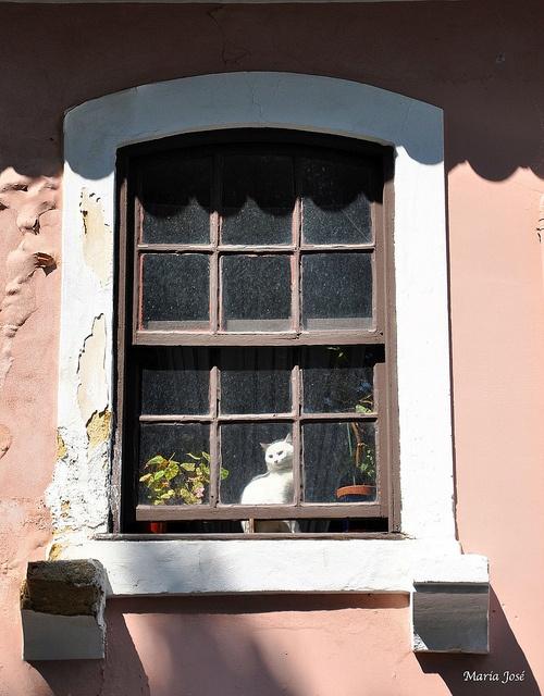 Costa Nova - Aveiro - www.enjoyportugal.eu or our facebook page - https://www.facebook.com/enjoyportugalcountry