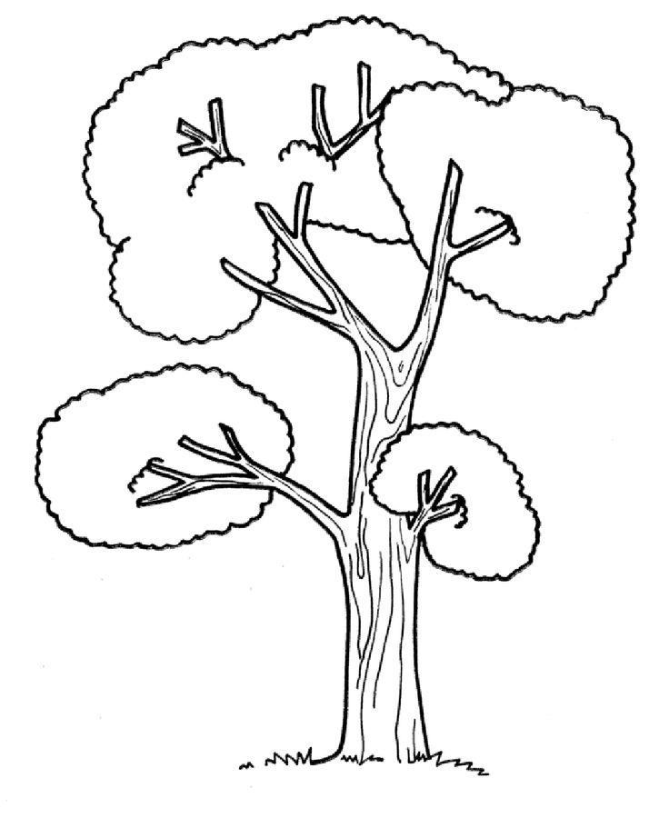 fallen tree log coloring pages