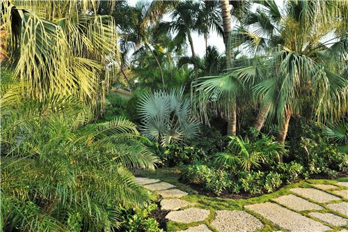 Image from http://images.landscapingnetwork.com/pictures/images/500x500Max/site_8/tropical-plants-craig-reynolds-landscape-architecture_3943.jpg.