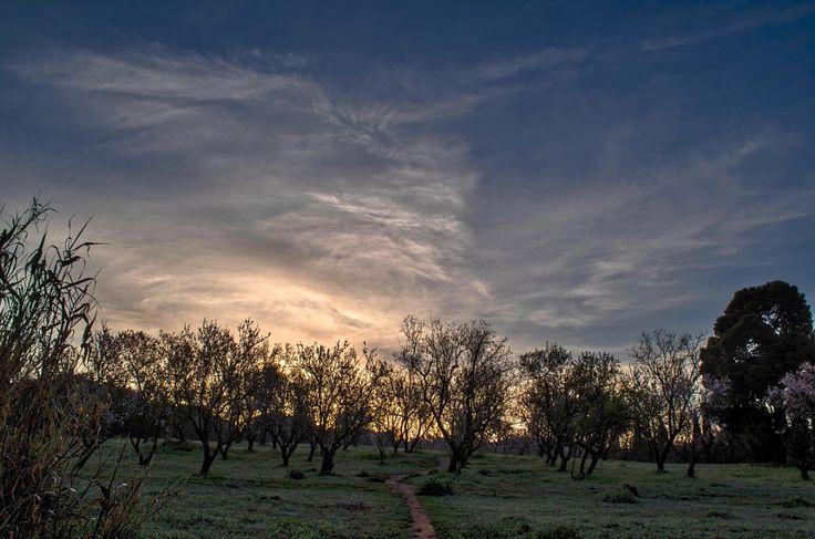 Follow the path by Odysseas Megalooikonomou - Photo 142637213 - 500px